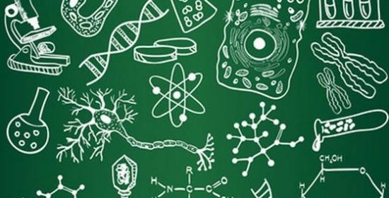 Цікаві факти з біології